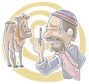 camel needle