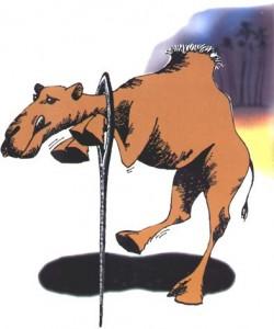 CamelNeedle-250x300